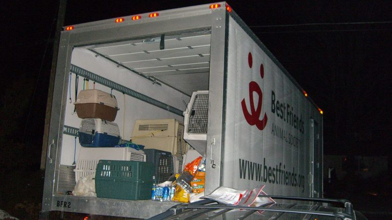 BF Animal Society delivering a truckload of animals to me after Katrina